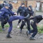 PoliceGipsy
